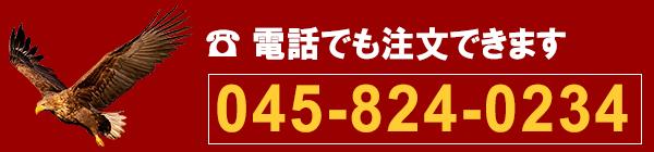電話 045-824-0234